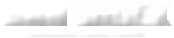 Dan Shock Logo